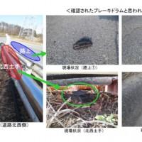 http://www.tepco.co.jp/nu/fukushima-np/handouts/2015/images/handouts_150324_03-j.pdf より